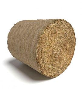 Большой рулон сена